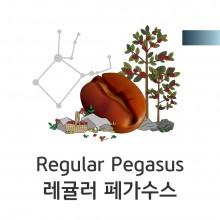 [클래식원두] 레귤러 페가수스1kg