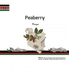 [Kenya] Peaberry