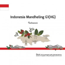 [Indonesia] mandheling G1