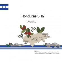 [Honduras] SHG