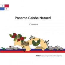 Panama Geisha Natural