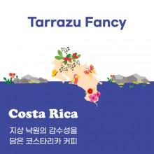 [코스타리카] Tarrazu Fancy