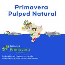 [브라질] Primavera Pulped Natural
