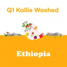 [에티오피아] Q1 KALLIE Washed