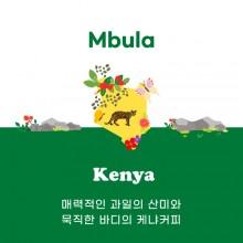 [케냐] Mbula