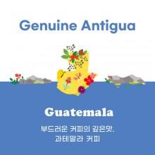 [과테말라] Genuine Antigua